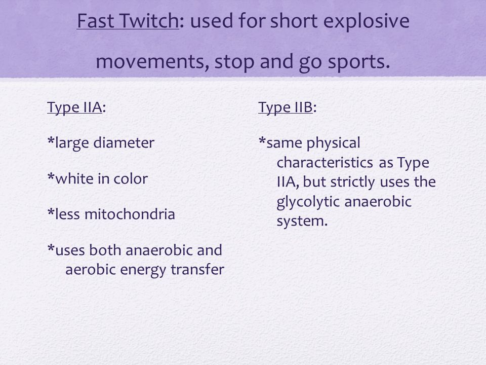 slow and fast twitch muscle fibre types - ppt download, Muscles