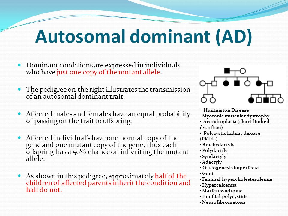 alexander s disease an autosomal dominant disorder Adult-onset alexander disease is the most variable and the least common  disease is a genetic disorder that is likely autosomal recessive given  hoffman, v puri, s naidu, and a b johnson, unpublished observations.
