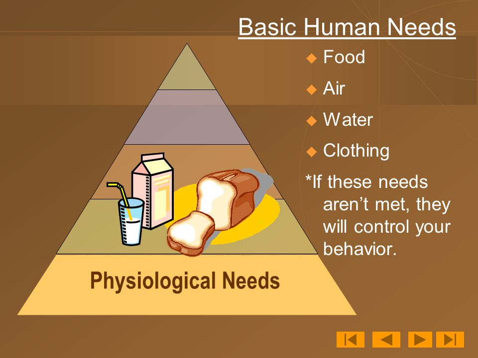 Basic Human Needs Physiological Needs Food Air Water Clothing
