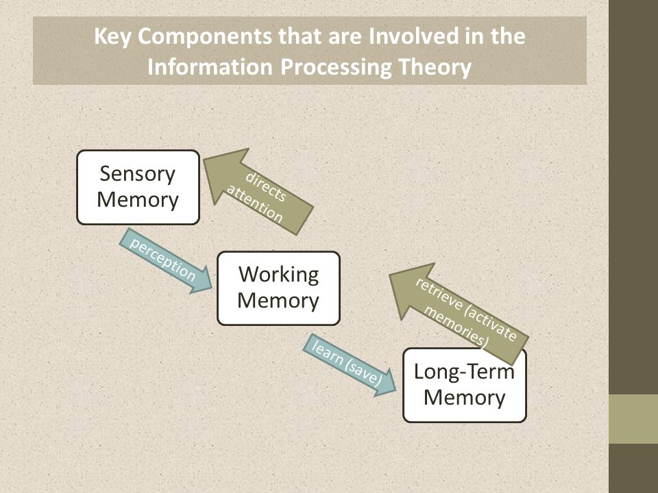 information processing theory - Monza berglauf-verband com