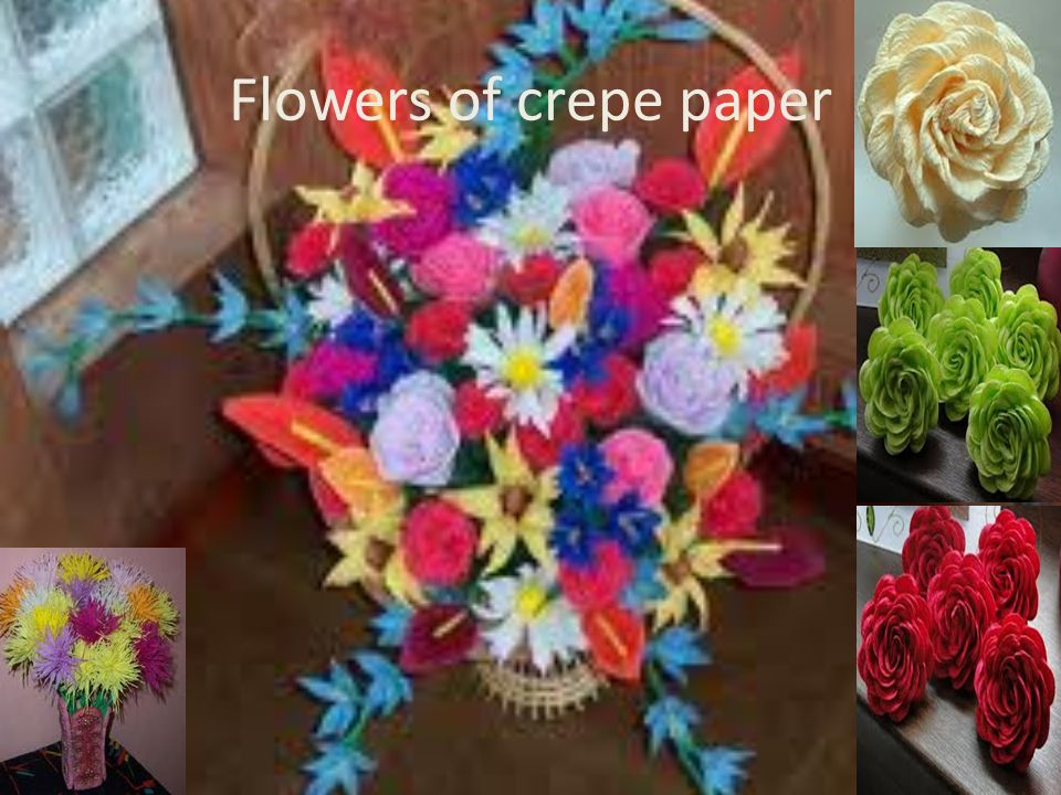 Flowers of crepe paper