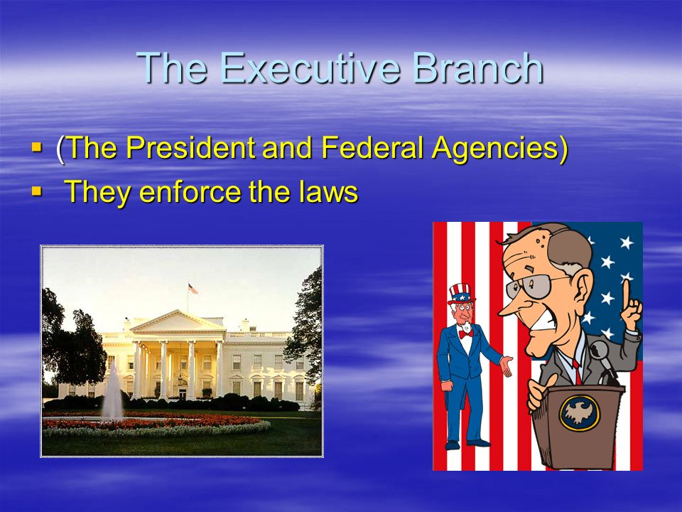 The Executive Branch (The President and Federal Agencies)