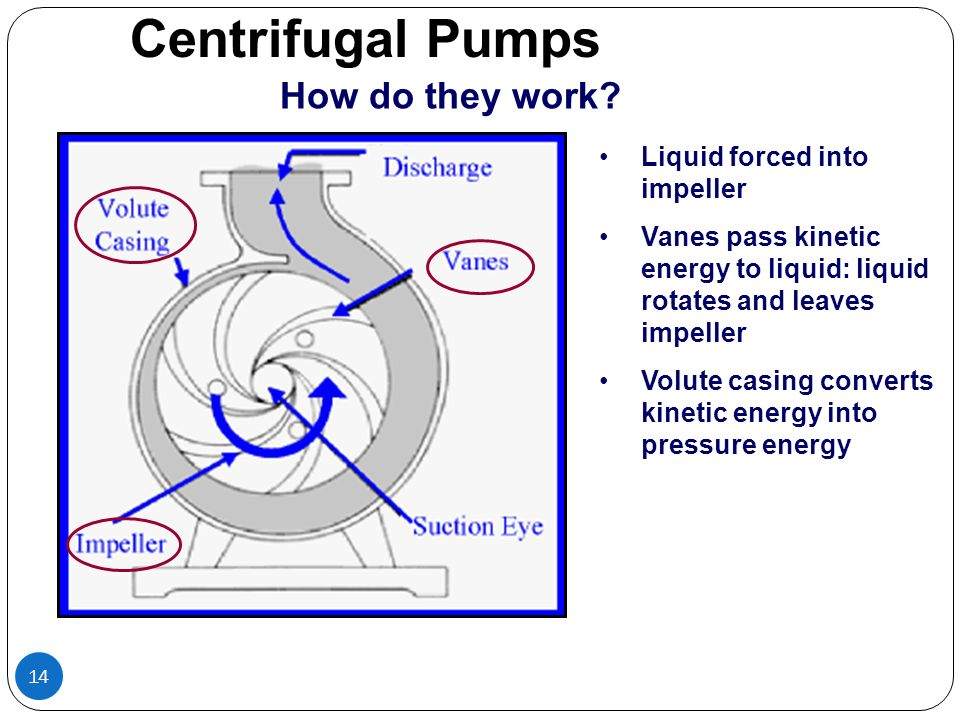 Centrifugal Pumps How do they work Liquid forced into impeller