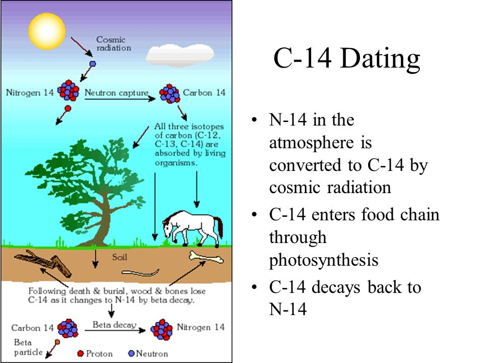 Carbon-14 Is Used For Radio Dating Of Organic Materials