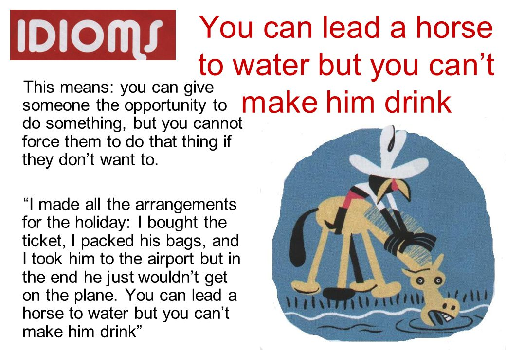 Lead Horse Water Cant Drink