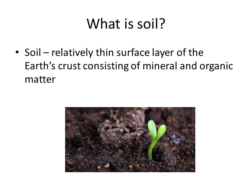 Soils ppt video online download for What is important to know about soil layers