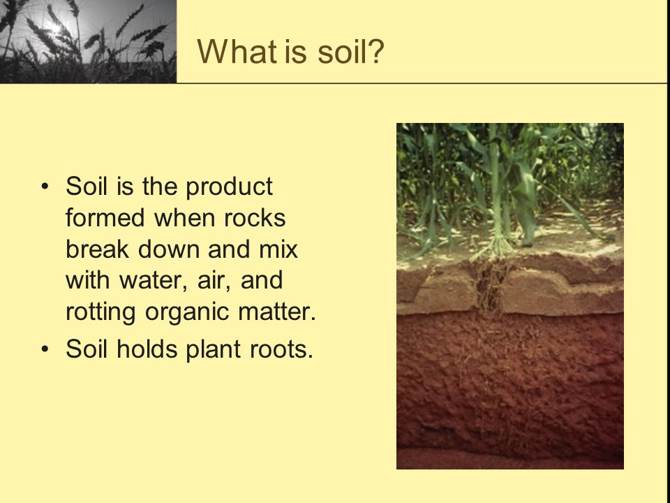 A lesson on the formation and composition of natural soil for What is soil a mixture of