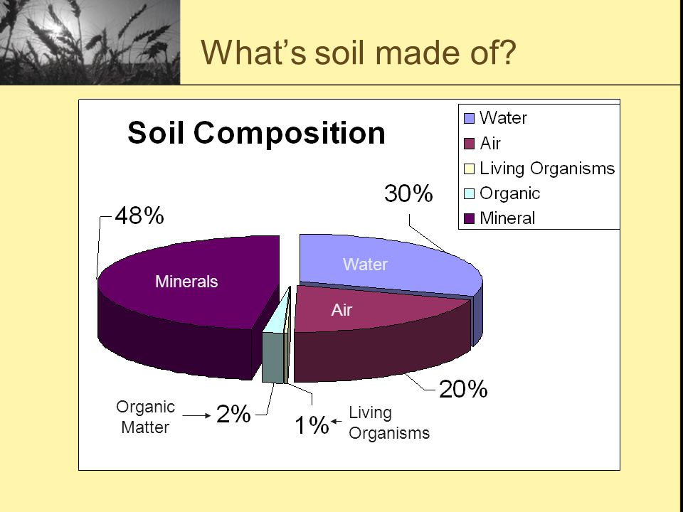 A lesson on the formation and composition of natural soil for What is soil mostly made of