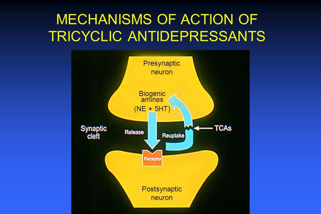 postherpetic neuralgia steroids