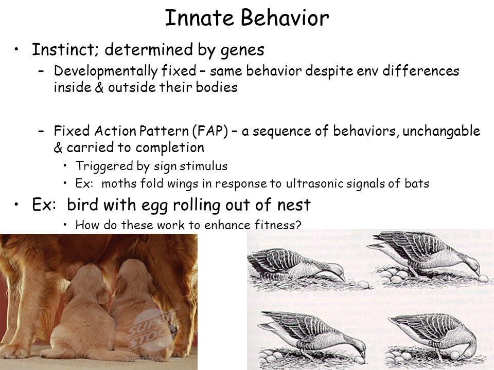 Ch 35 Behavioral Biology Goals Define Behavioral Ecology Ppt