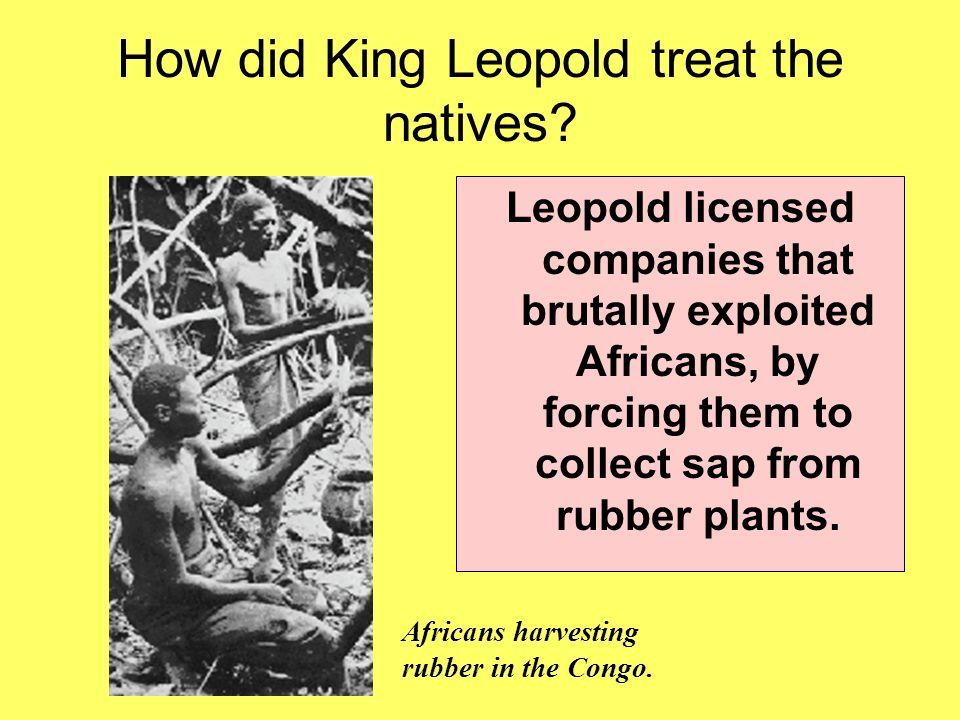 an essay on the life and works of king leopold ii in congo The hidden holocaust  built to celebrate king leopold ii's acquisition of the congo a century  'i think it is a very shoddy piece of work leopold did not start .