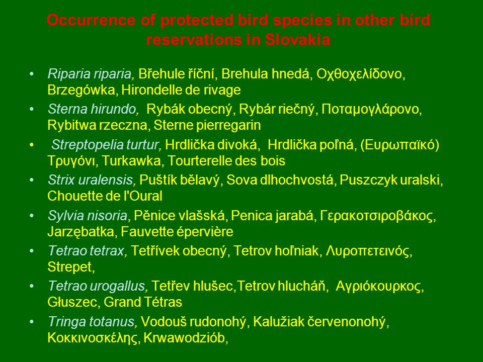 Occurrence of protected bird species in other bird reservations in Slovakia