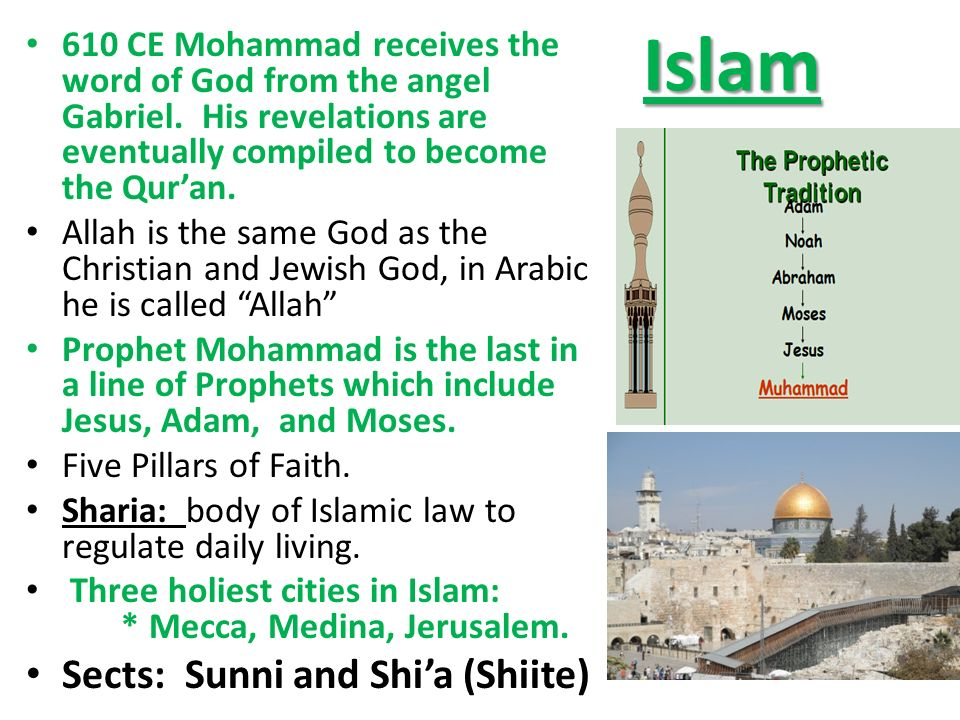islam its history sects and pillars essay View and download five pillars of islam essays examples also discover topics, titles, outlines, thesis statements, and conclusions for your five pillars of islam essay.