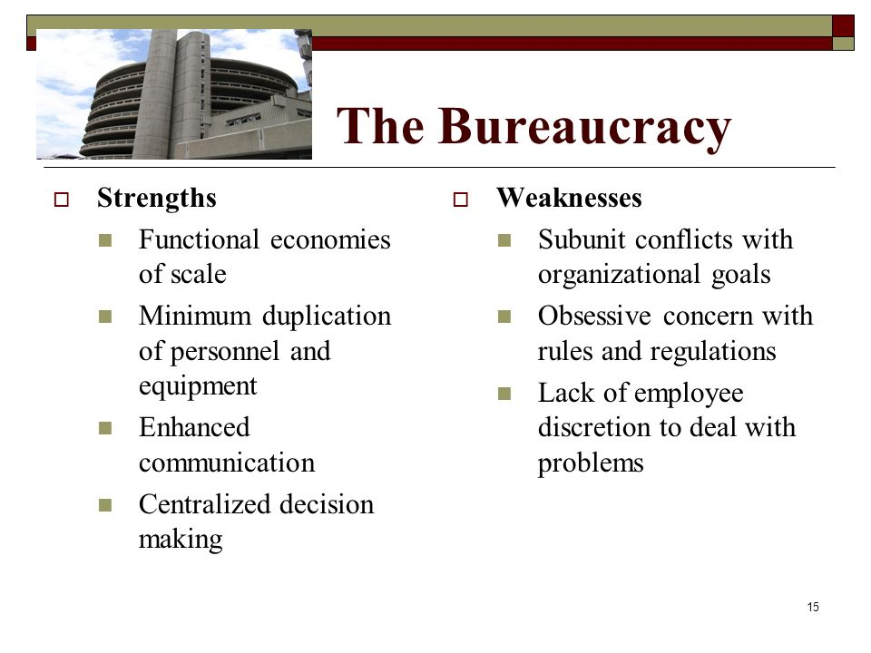 The Bureaucracy Strengths Functional economies of scale