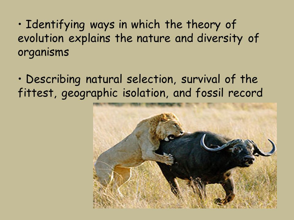 Conditions For Natural Selection Of Adaption