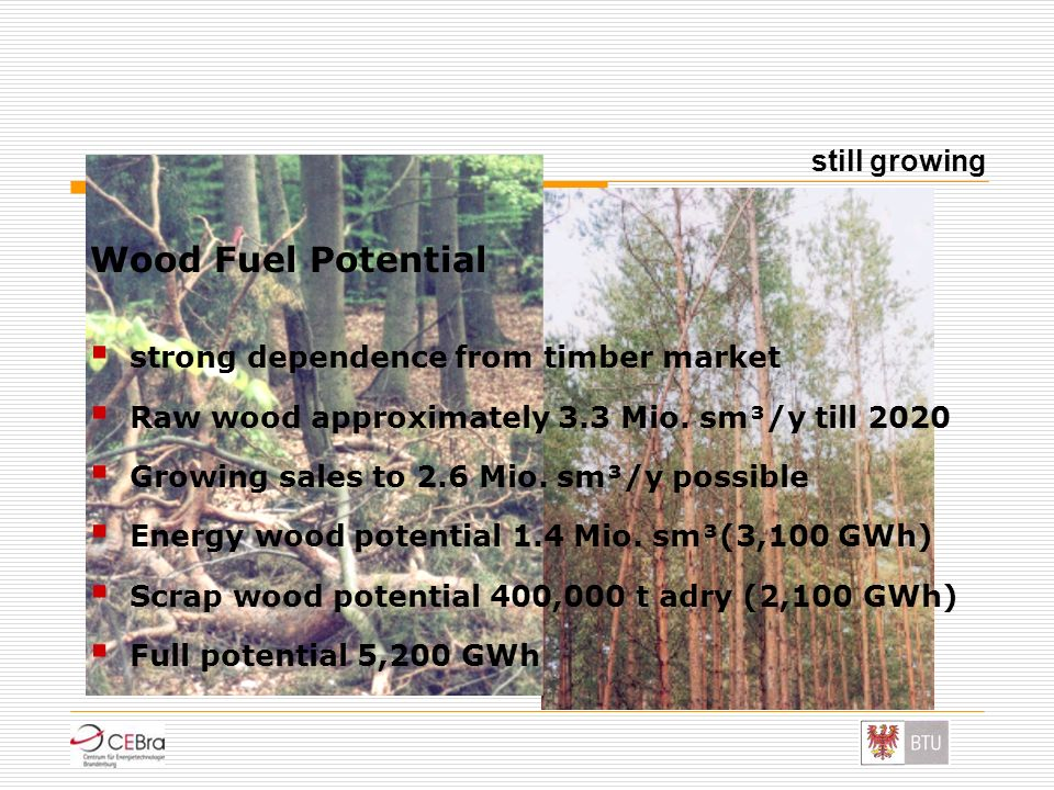 Wood Fuel Potential still growing strong dependence from timber market