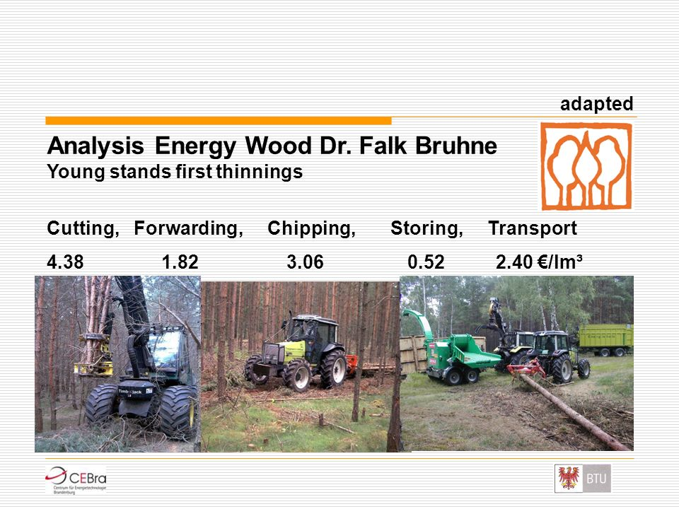 Analysis Energy Wood Dr. Falk Bruhne