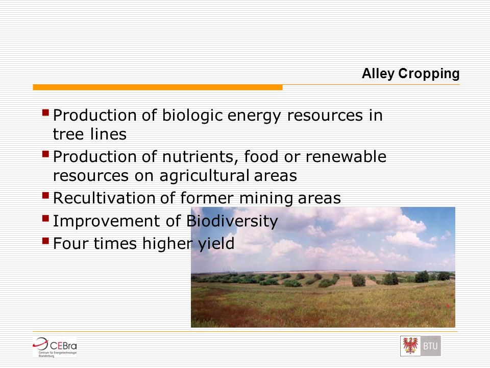 Production of biologic energy resources in tree lines