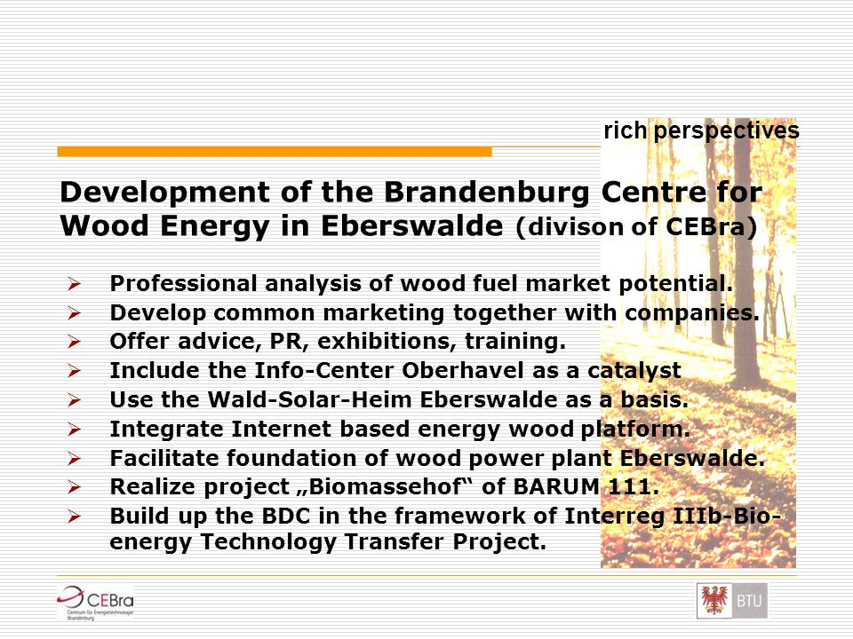 rich perspectives Development of the Brandenburg Centre for Wood Energy in Eberswalde (divison of CEBra)