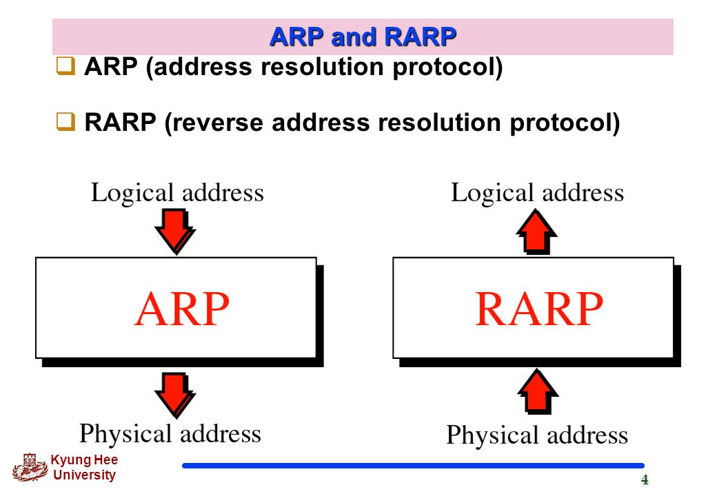 arp rarp Reverse address resolution protocol (rarp) this protocol does the exact opposite of arp given a mac address, it tries to find the corresponding ip address.