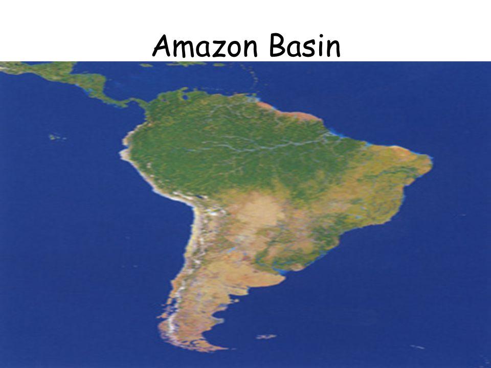 Objective tsw describe the biodiversity of the amazon river basin 4 amazon basin gumiabroncs Gallery