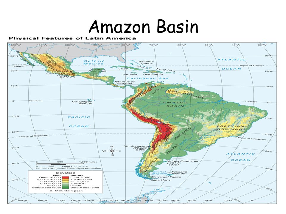 Objective TSW Describe The Biodiversity Of The Amazon River Basin - Where is the amazon river