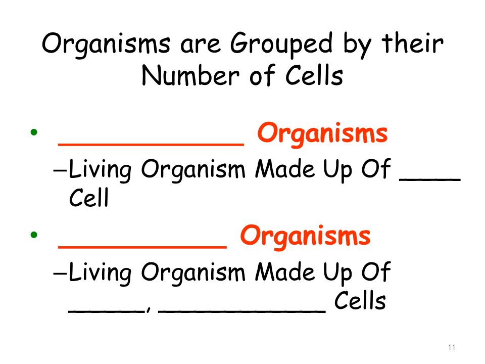 Organisms are Grouped by their Number of Cells