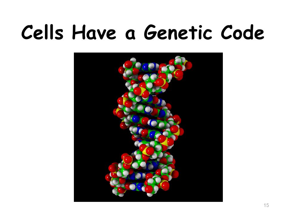 Cells Have a Genetic Code