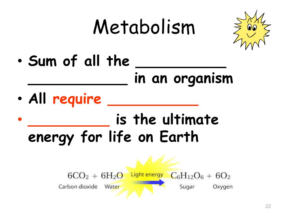 Metabolism Sum of all the __________ ___________ in an organism
