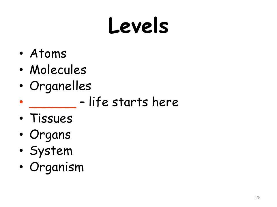 Levels Atoms Molecules Organelles ______ – life starts here Tissues