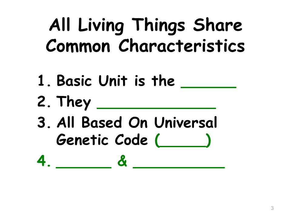 All Living Things Share Common Characteristics