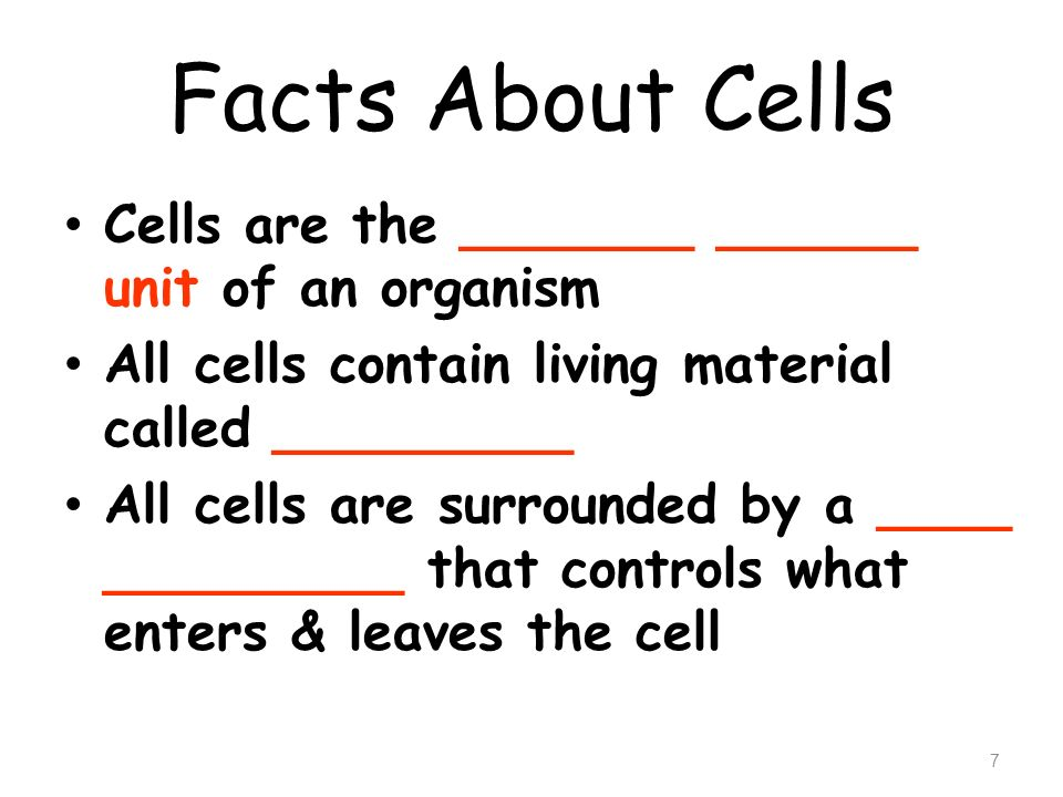 Facts About Cells Cells are the _______ ______ unit of an organism