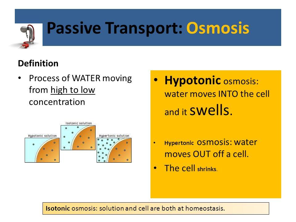 Osmosis Definition Unit 3: Cells C...