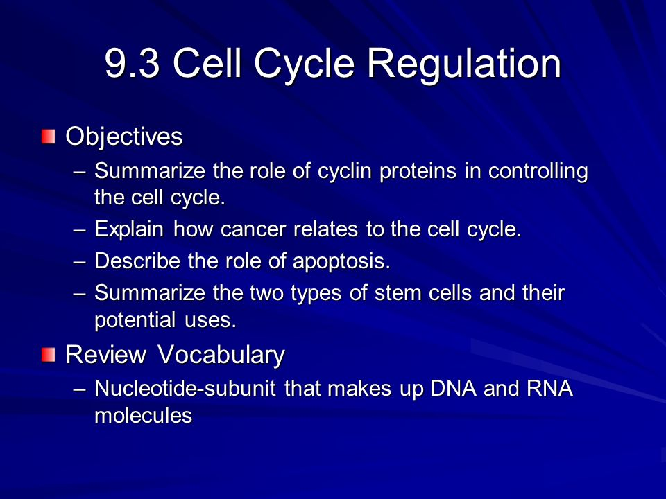 9.3 Cell Cycle Regulation Objectives Review Vocabulary