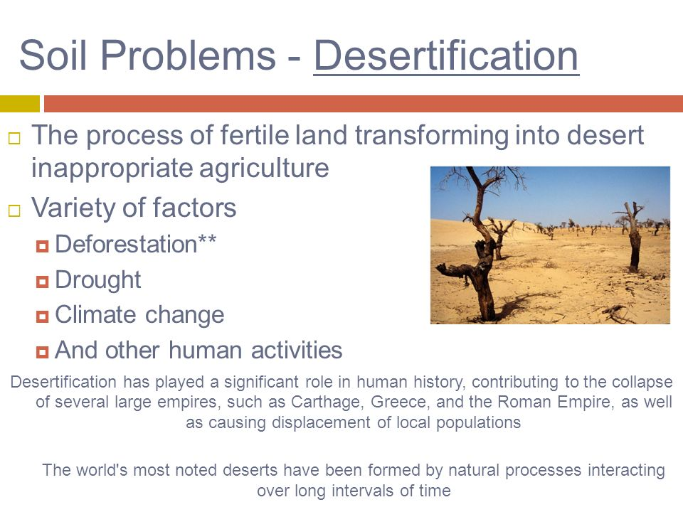 an analysis of the process of desertification Stakeholder identification and analysis are critical first steps in a participatory planning process stakeholder analysis is  preventing desertification,.