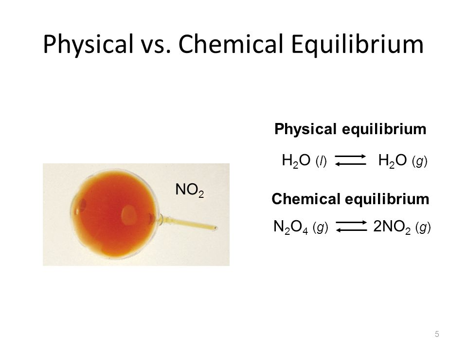 Physical vs. Chemical Equilibrium