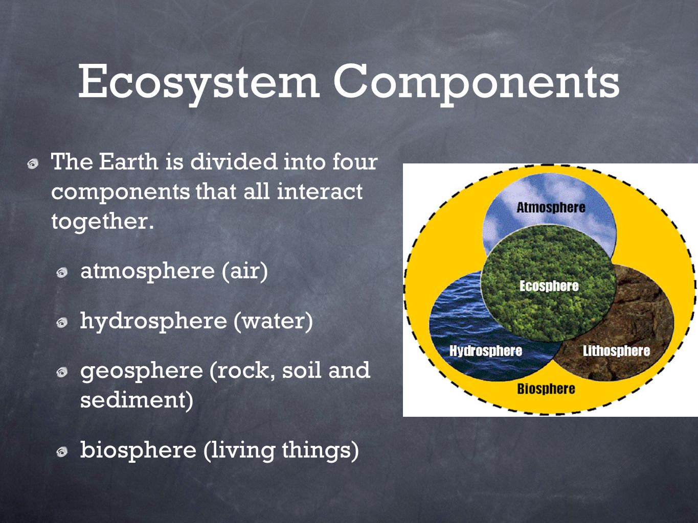 Ecosystems and their components ppt video online download for Four main components of soil