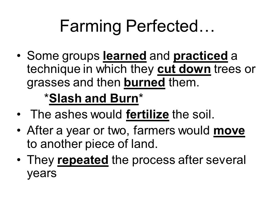 Farming Perfected… Some groups learned and practiced a technique in which they cut down trees or grasses and then burned them.