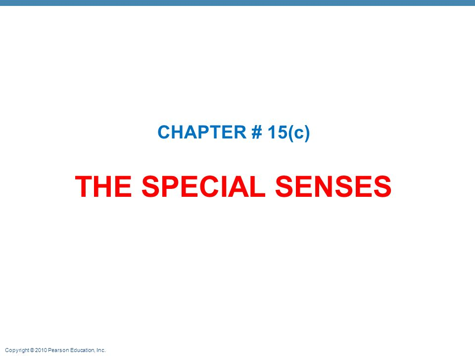 28+ [ppt chapter 17 the special senses powerpoint]