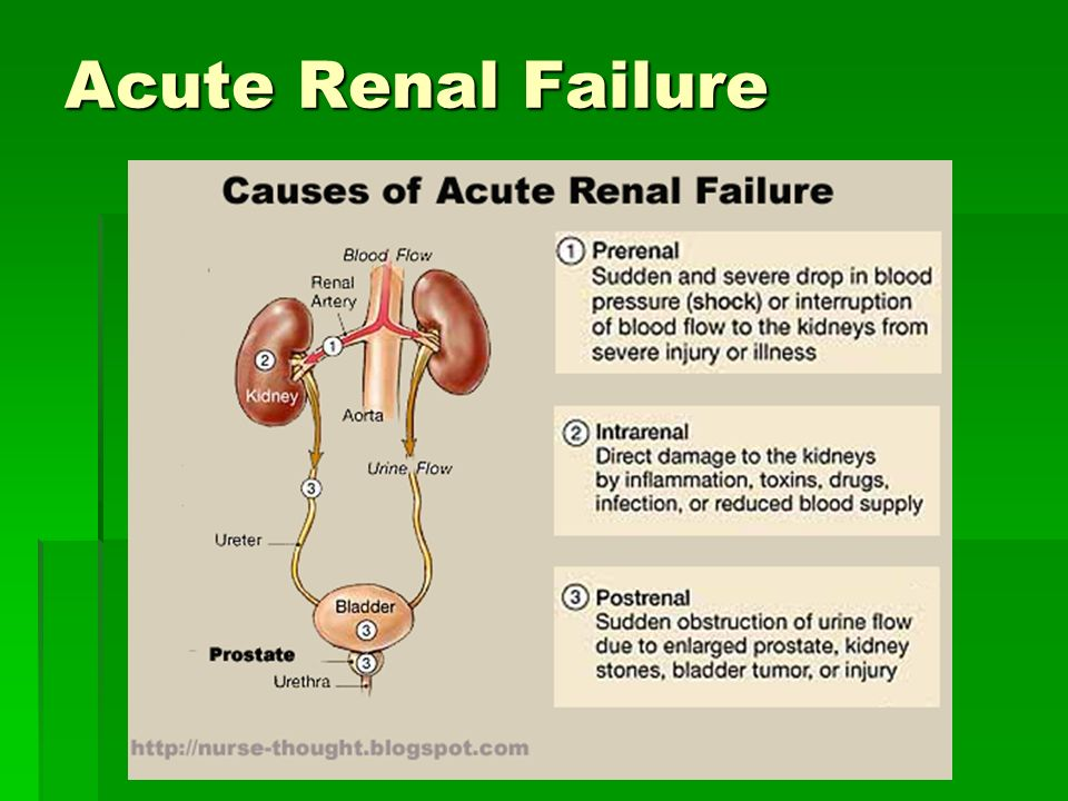 acute renal failurepower 1 Acute and chronic renal failure 1 acute and chronic renal failure dr s parasuraman faculty of pharmacy, aimst 2 renal failure • renal failure is defined as a significant loss of renal function in both kidneys to the point where less than 10 to 20% of normal gfr remains • renal failure may occur as an acute and r.