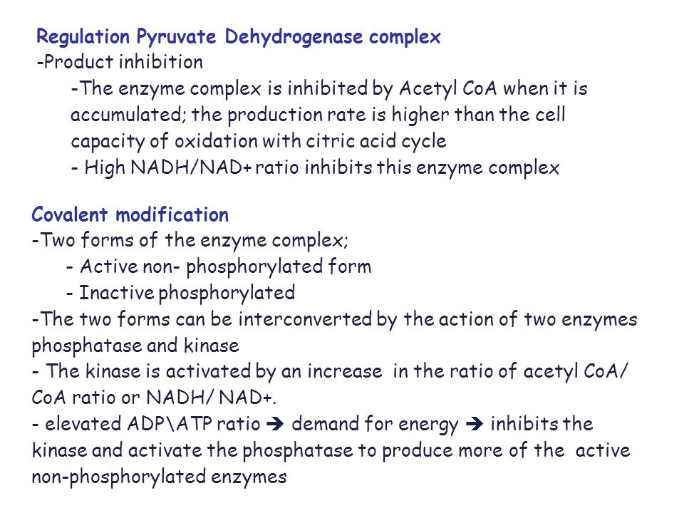 Oxidative Decarboxylation of Pyruvate - ppt video online download