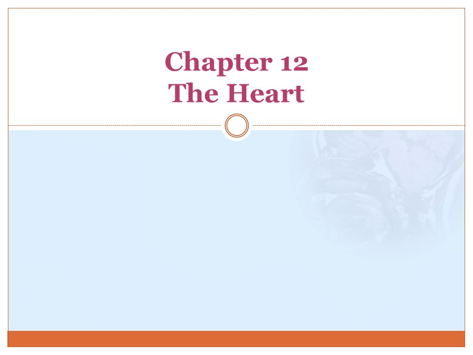 Chapter 12 The Heart. - ppt video online download