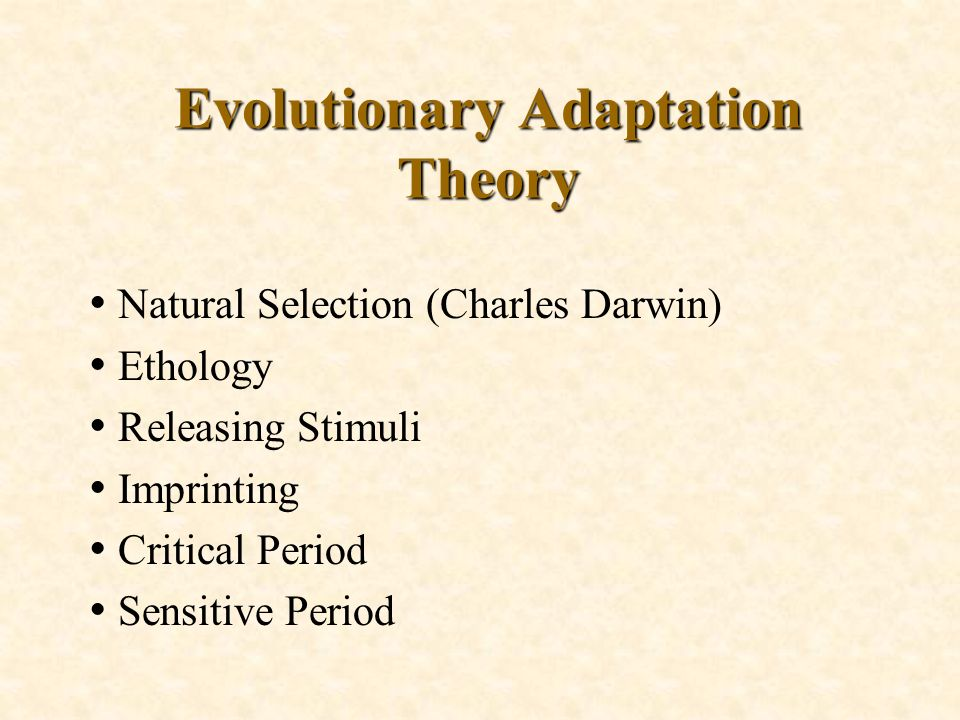 adaptation model theory analysis Helson's principles about adaptation helped roy develop the principle for her theory of the person as an adaptive system and her adaptation model (parker & smith, 2010) st mary's college implemented her model as part of the teaching curriculum in 1970.