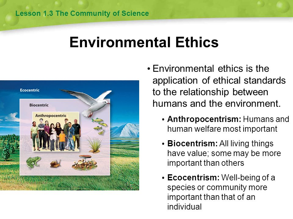 1business ethics is the application of 2611businesscases 310access/ethics  application an application is any computer program.