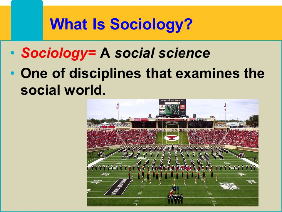 sociology and the disciplines of social science Contribution of emile durkheim study of society sociology essay print the essay will move on to explore durkheim's contribution to the social sciences through the use of examples durkheim rejects comte's opinion to unify social science with other scientific disciplines and try to.