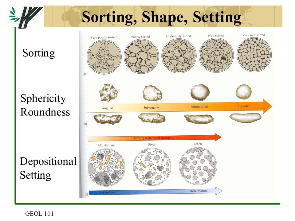 Clastic sedimentary rocks can be directly dated using isotopic dating 10