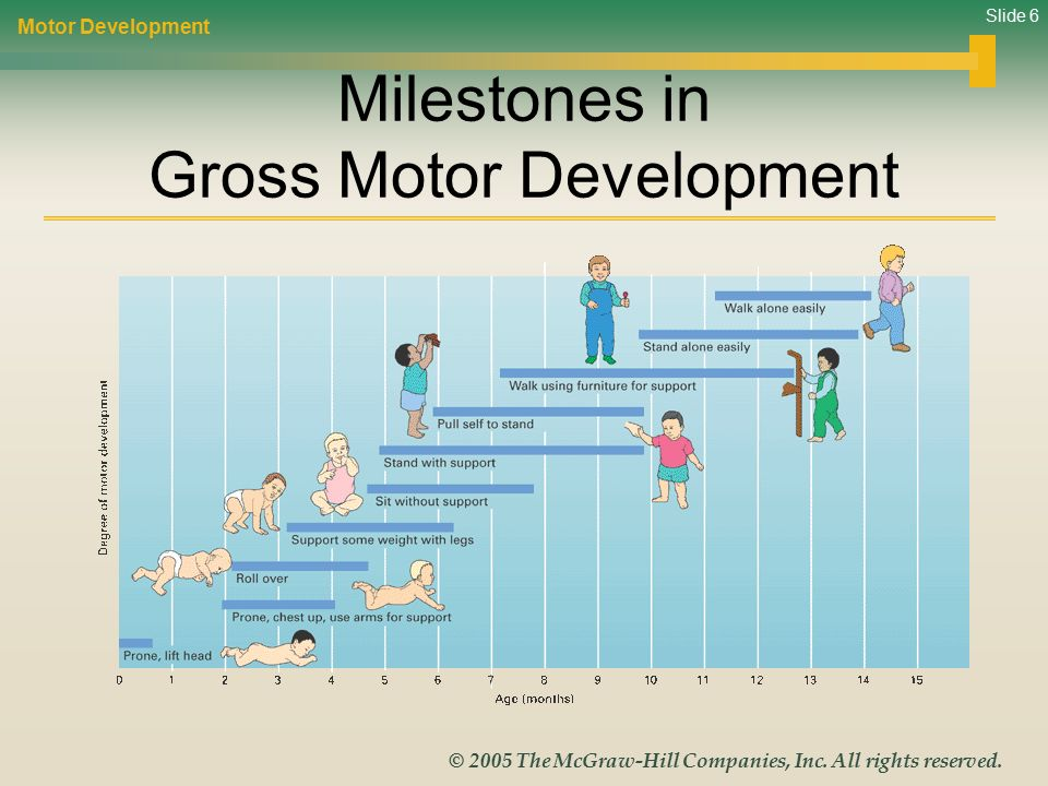 Life Span Development Ppt Video Online Download