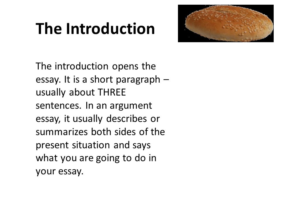 different ways to write an essay introduction