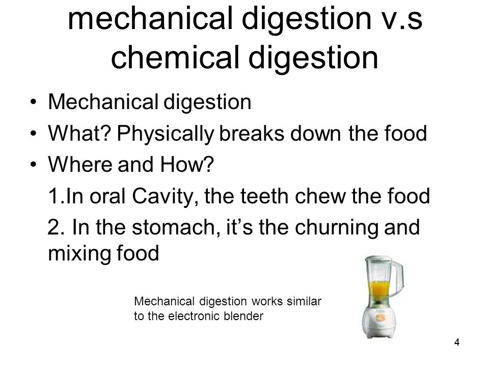 mechanical and chemical digestion Mechanical digestion is the physical process of preparing the food for chemical digestion it involves chewing (in the mouth), mixing , churning (in the stomach and intestine) and segmentation (in the intestine.