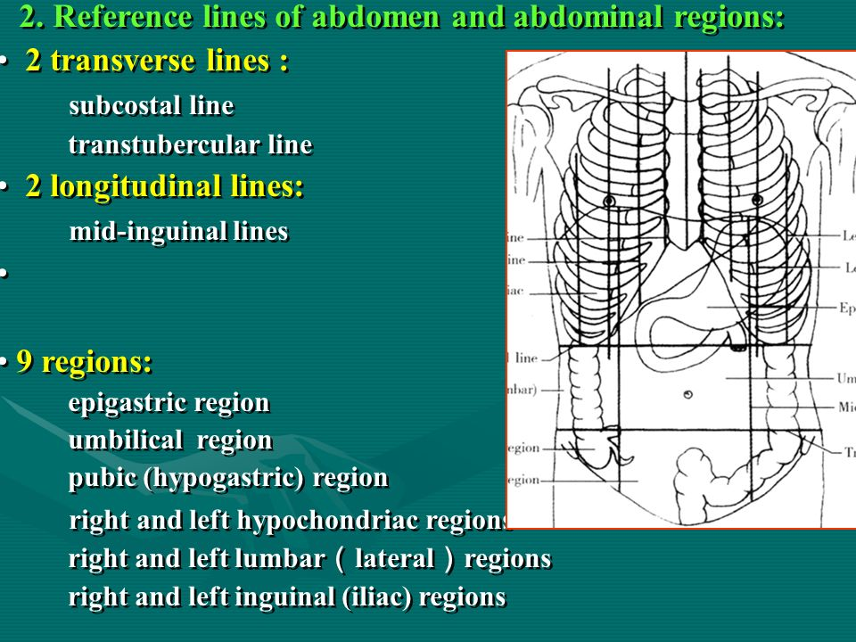regions and lines The structure of the broad-line region and torus the two most  basic questions about the blr are what does it look like and how is it moving .